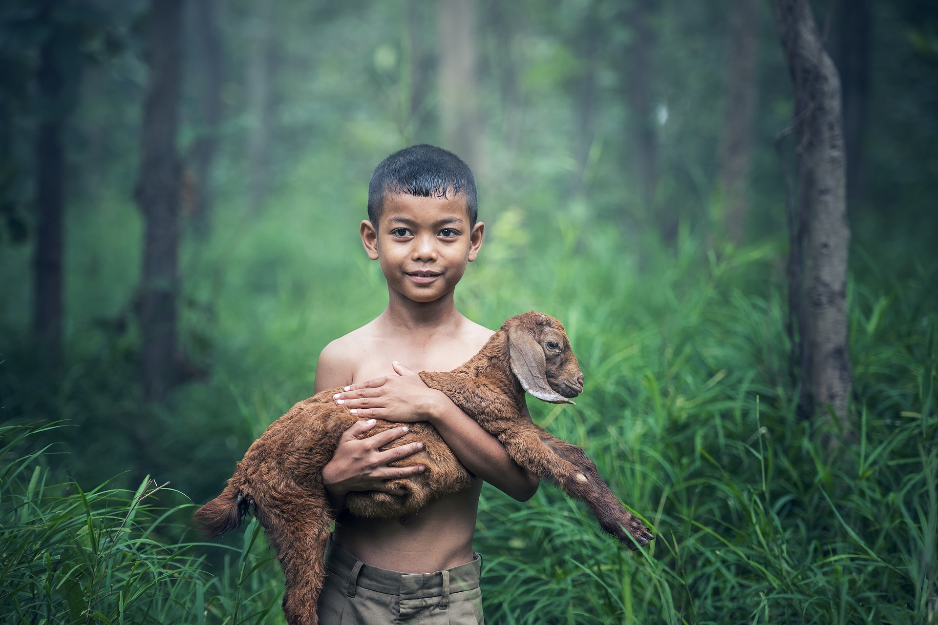 A boy is carrying goat to save from enemy