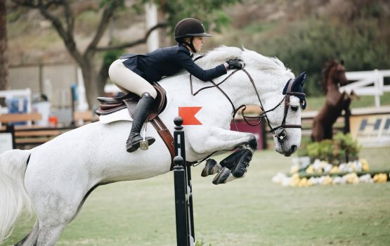 Horse riding is good for health